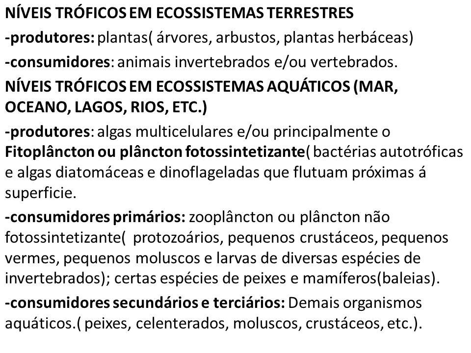 NÍVEIS TRÓFICOS EM ECOSSISTEMAS TERRESTRES