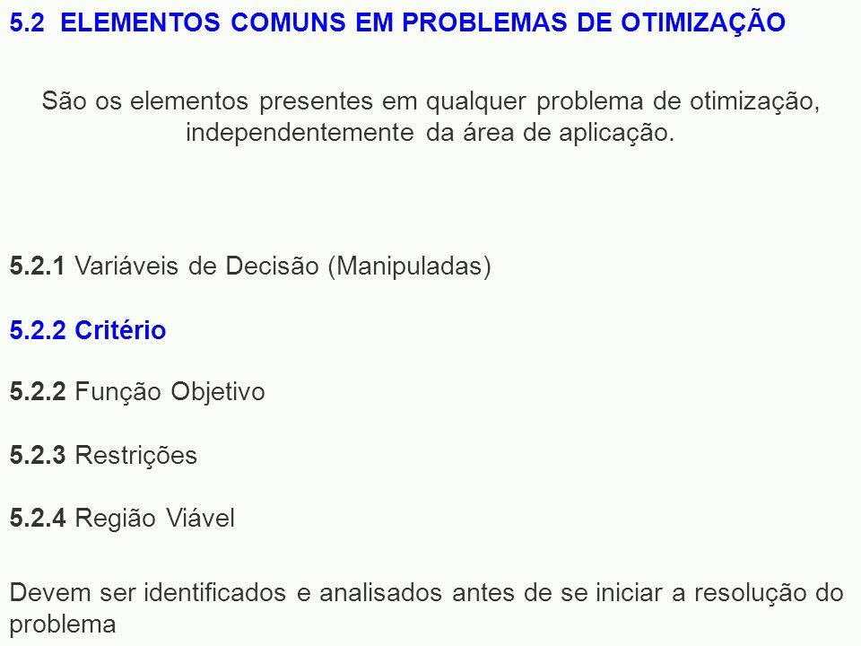 5.2 ELEMENTOS COMUNS EM PROBLEMAS DE OTIMIZAÇÃO