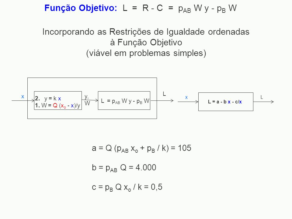 Função Objetivo: L = R - C = pAB W y - pB W