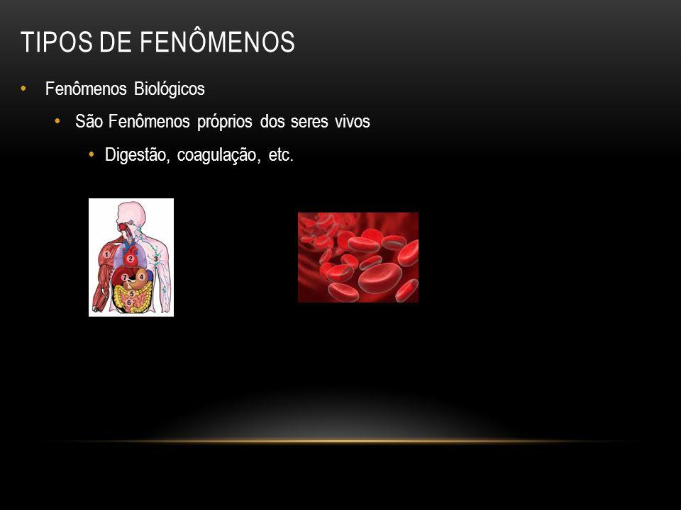 TIPOS DE FENÔMENOS Fenômenos Biológicos