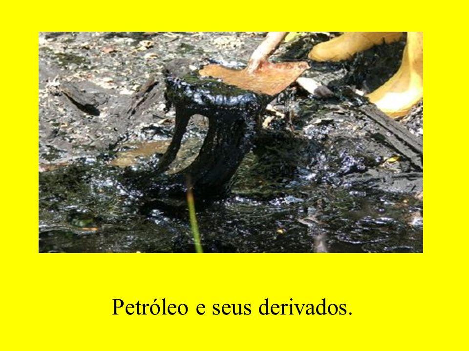 Petróleo e seus derivados.