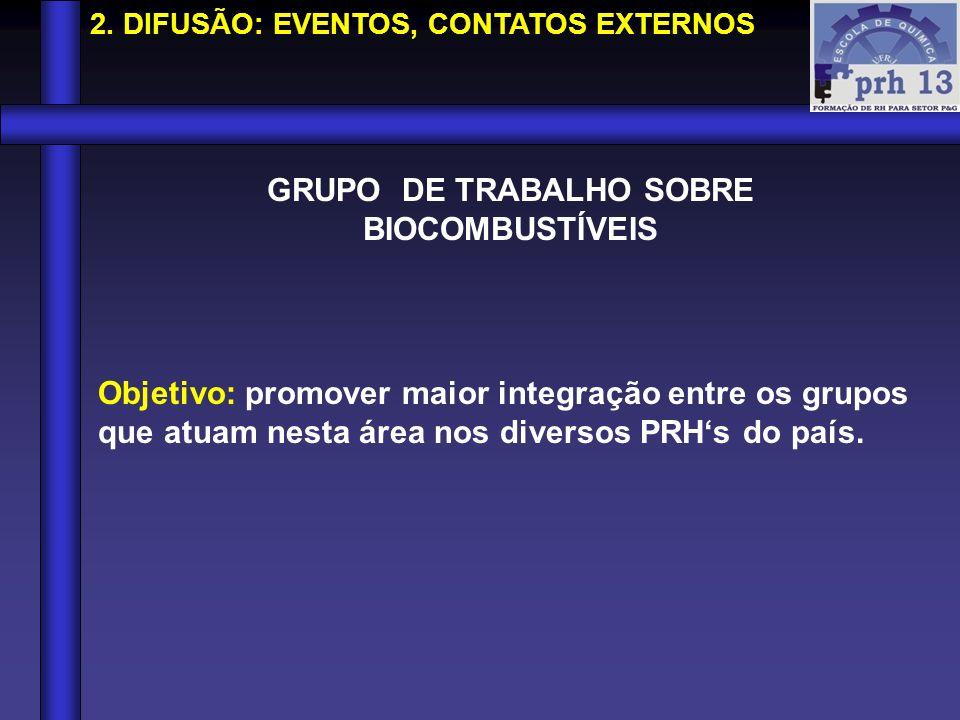 GRUPO DE TRABALHO SOBRE BIOCOMBUSTÍVEIS