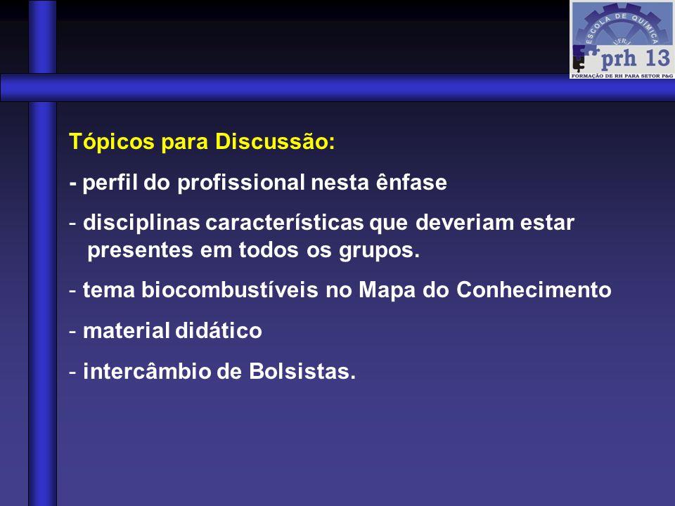 Tópicos para Discussão: - perfil do profissional nesta ênfase