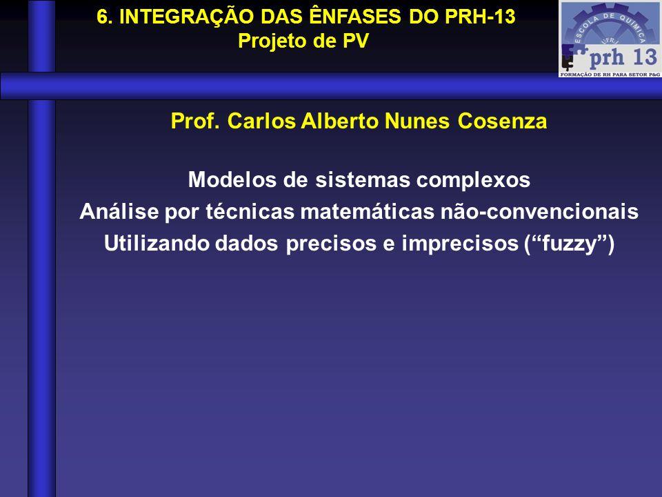 Prof. Carlos Alberto Nunes Cosenza Modelos de sistemas complexos