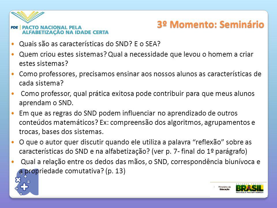 3º Momento: Seminário Quais são as características do SND E o SEA