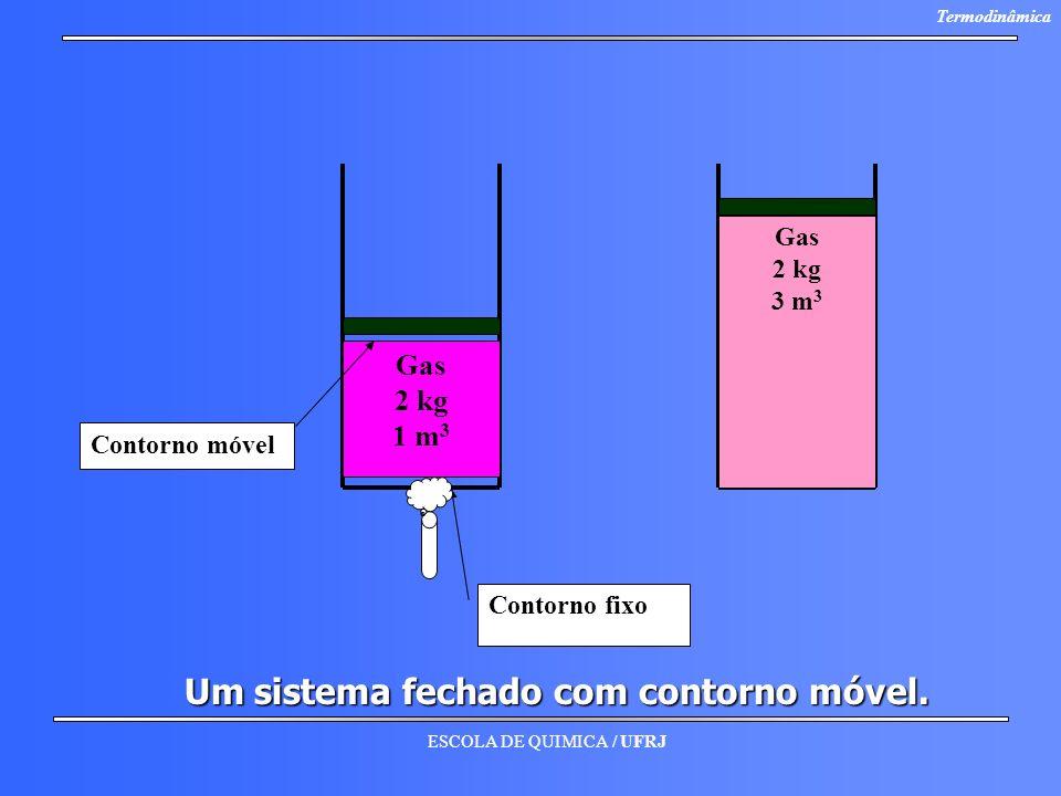 Um sistema fechado com contorno móvel.