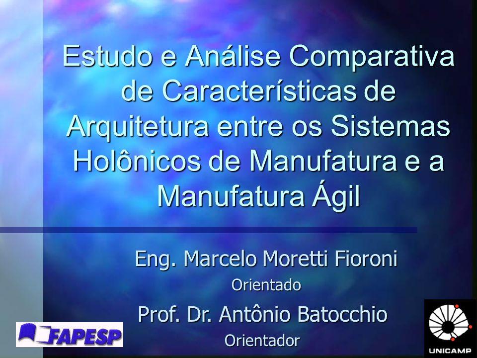 Eng. Marcelo Moretti Fioroni Orientado