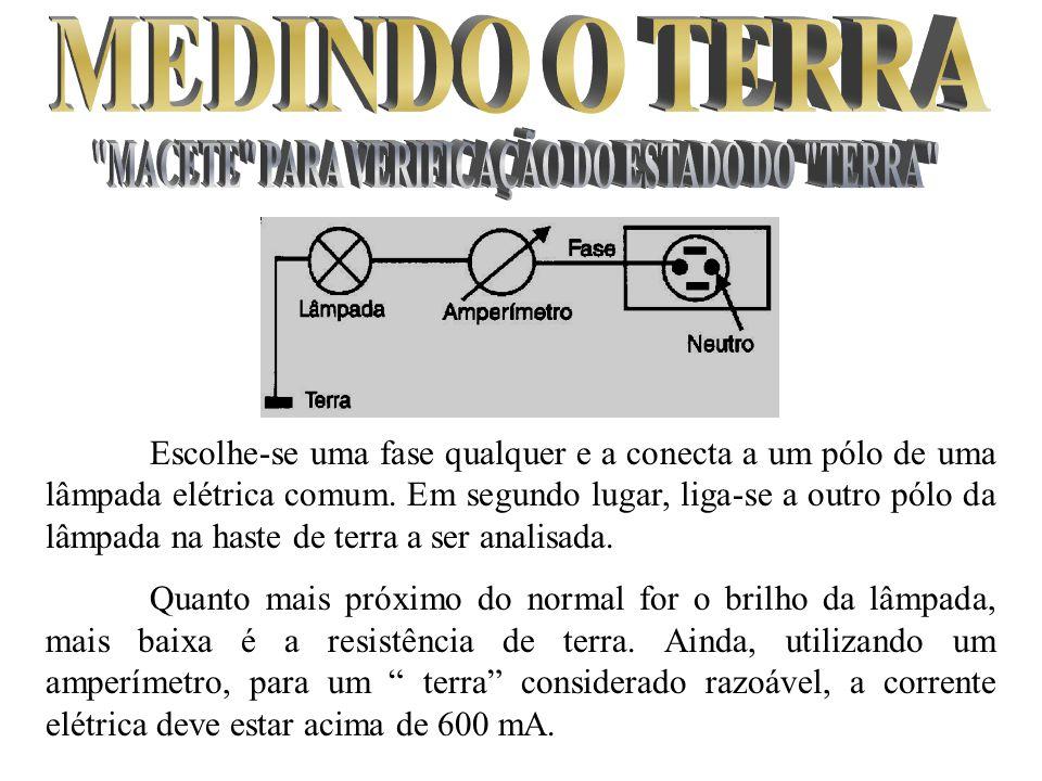 MACETE PARA VERIFICAÇÃO DO ESTADO DO TERRA