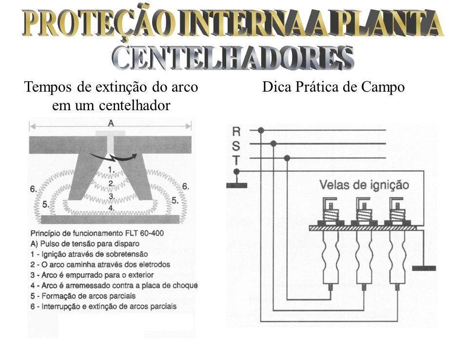 PROTEÇÃO INTERNA A PLANTA