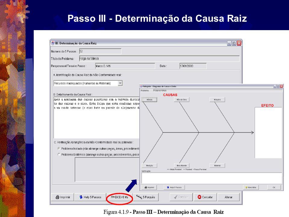 Passo III - Determinação da Causa Raiz