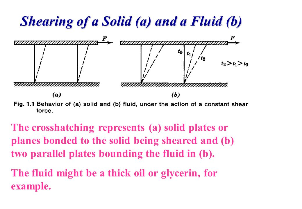 Shearing of a Solid (a) and a Fluid (b)