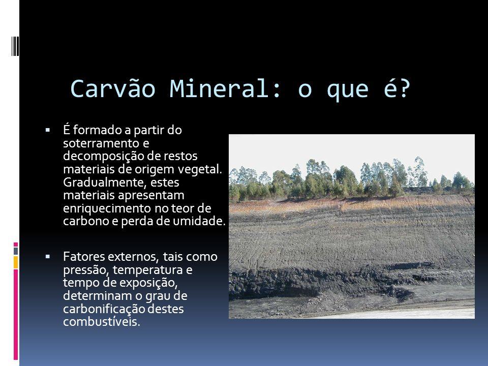 Carvão Mineral: o que é
