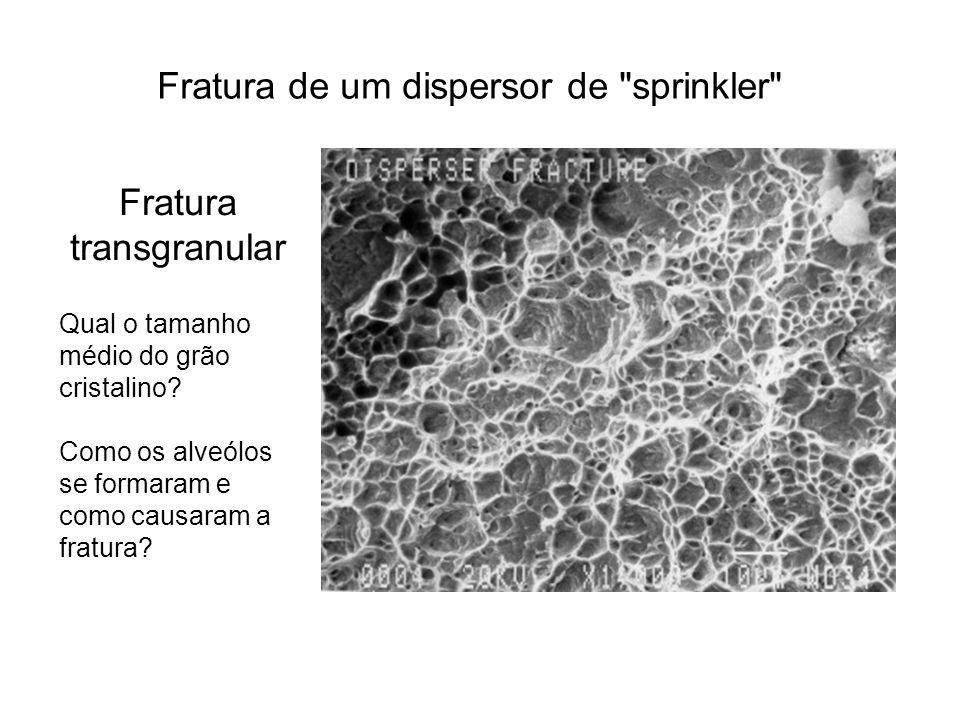 Fratura transgranular