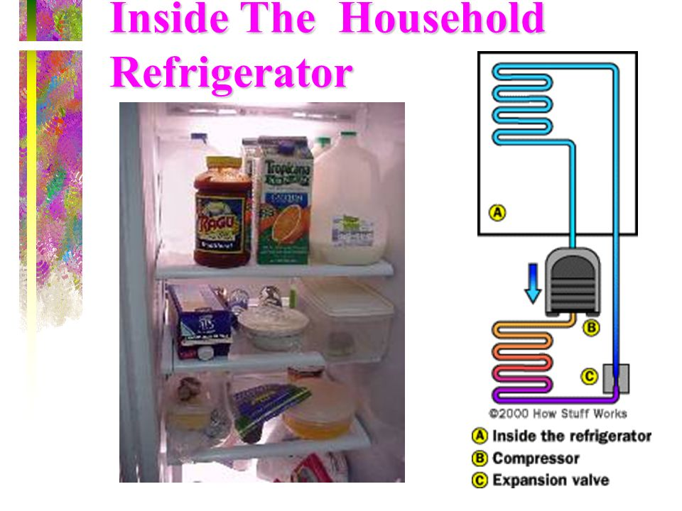 Inside The Household Refrigerator
