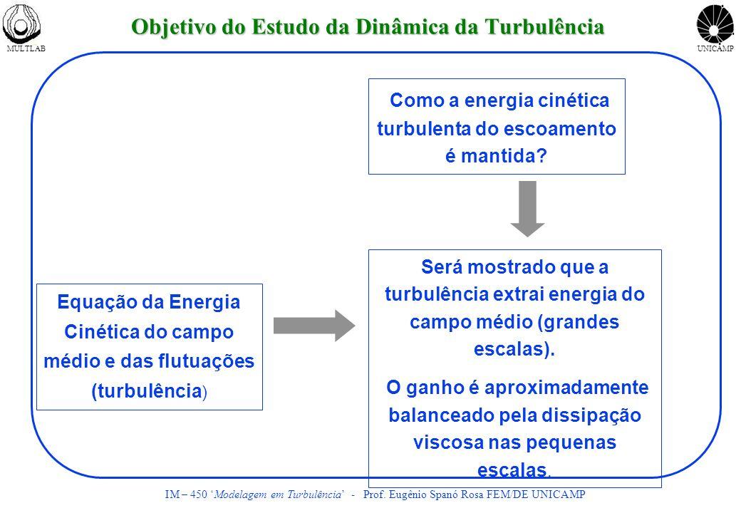 Objetivo do Estudo da Dinâmica da Turbulência