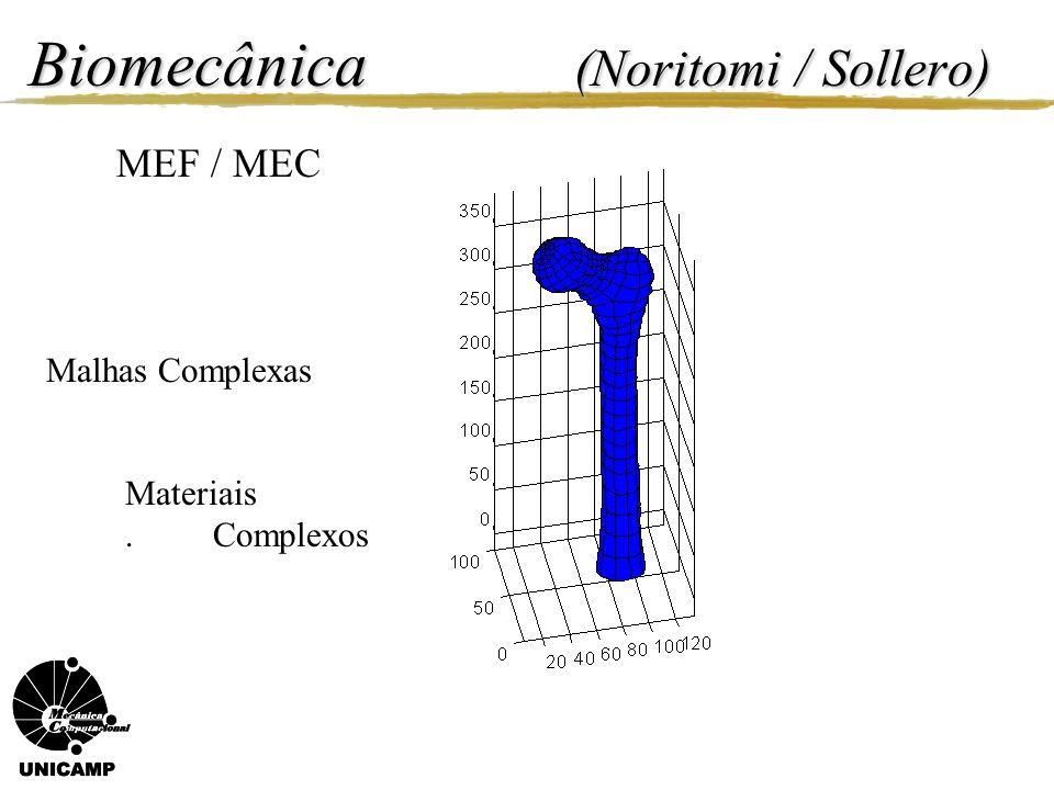Biomecânica (Noritomi / Sollero)