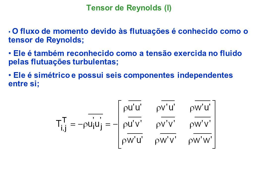 Ele é simétrico e possui seis componentes independentes entre si;