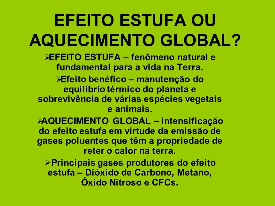 EFEITO ESTUFA OU AQUECIMENTO GLOBAL