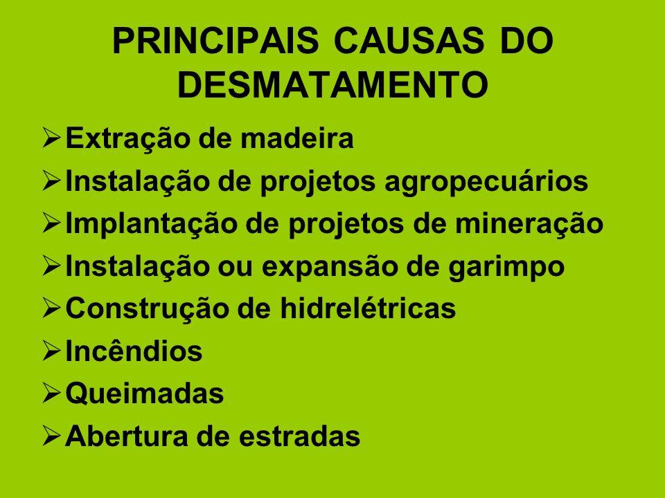 PRINCIPAIS CAUSAS DO DESMATAMENTO