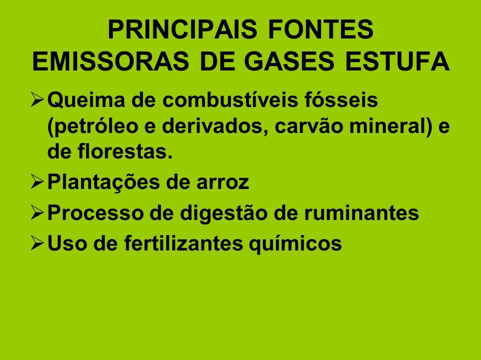 PRINCIPAIS FONTES EMISSORAS DE GASES ESTUFA