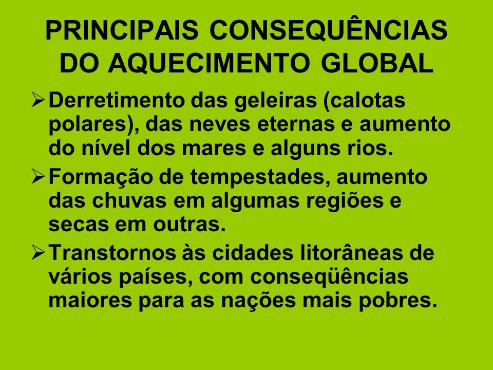 PRINCIPAIS CONSEQUÊNCIAS DO AQUECIMENTO GLOBAL