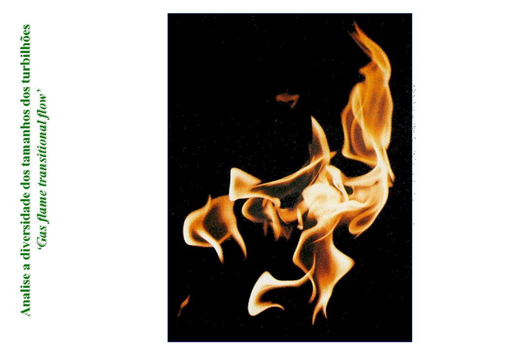 Analise a diversidade dos tamanhos dos turbilhões 'Gas flame transitional flow'
