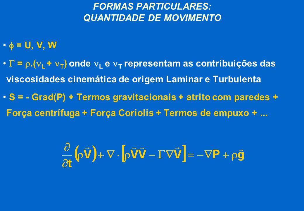 FORMAS PARTICULARES: QUANTIDADE DE MOVIMENTO