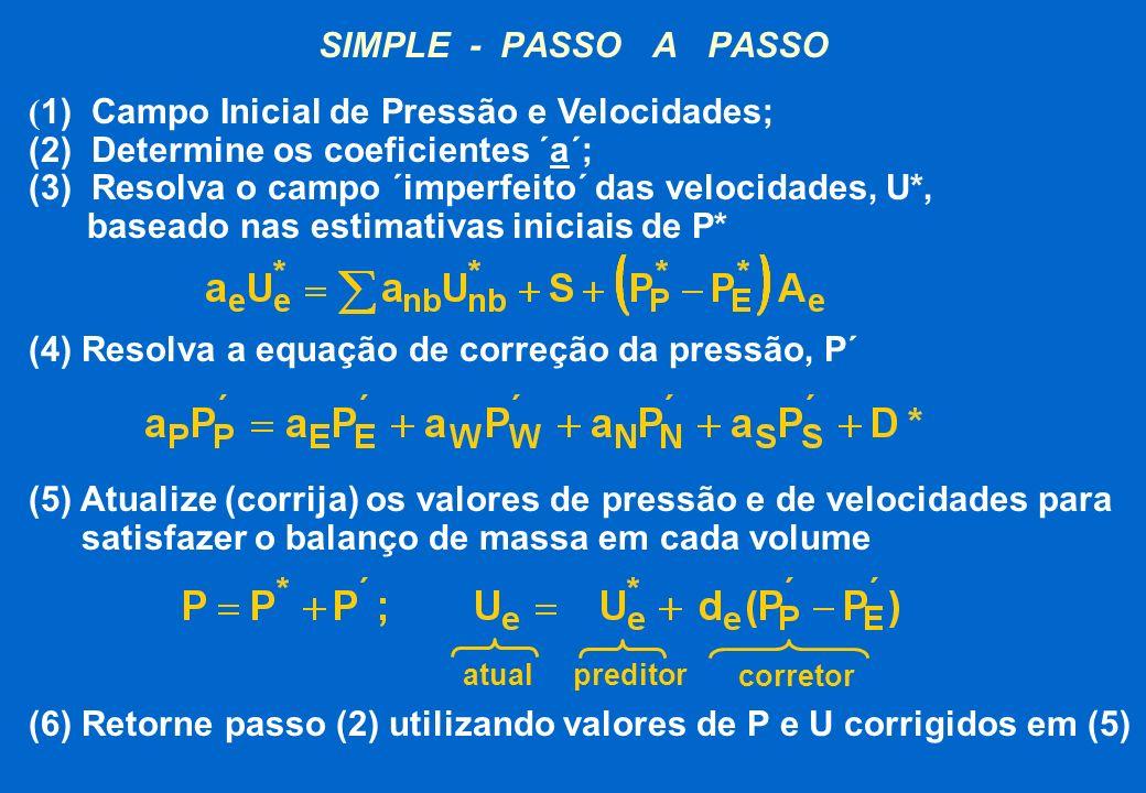 (1) Campo Inicial de Pressão e Velocidades;
