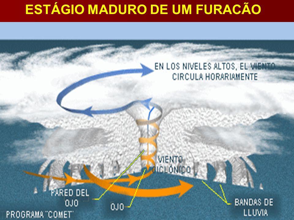 ESTÁGIO MADURO DE UM FURACÃO