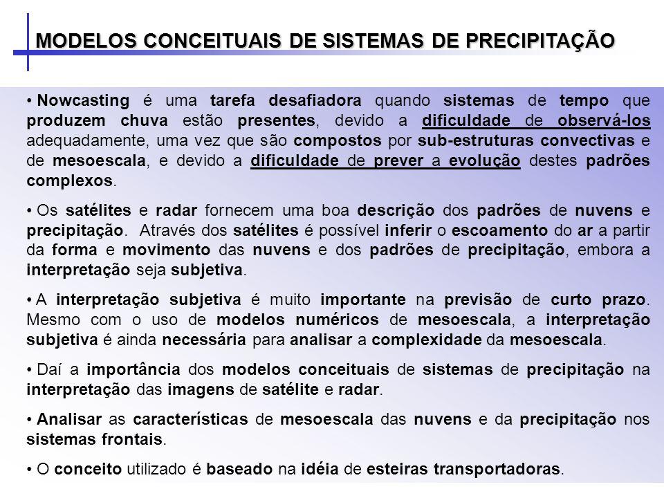 MODELOS CONCEITUAIS DE SISTEMAS DE PRECIPITAÇÃO