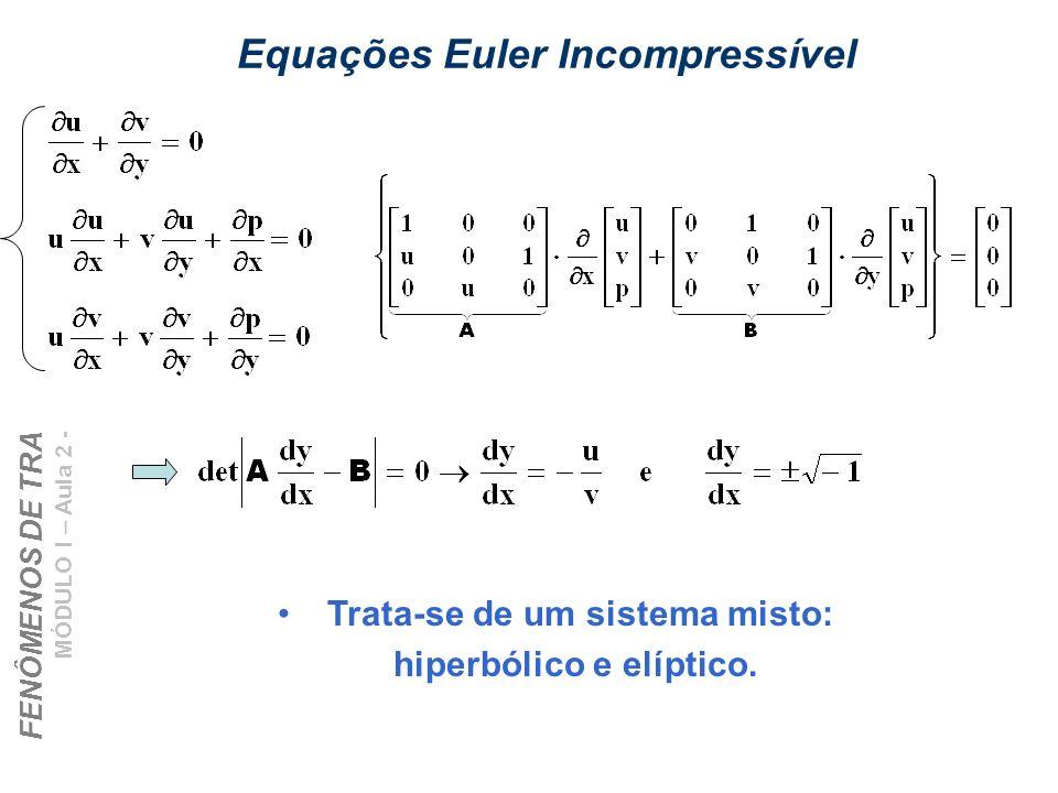 Equações Euler Incompressível