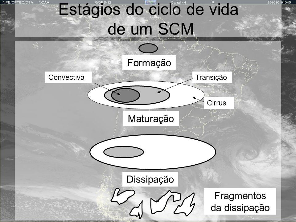 Estágios do ciclo de vida de um SCM