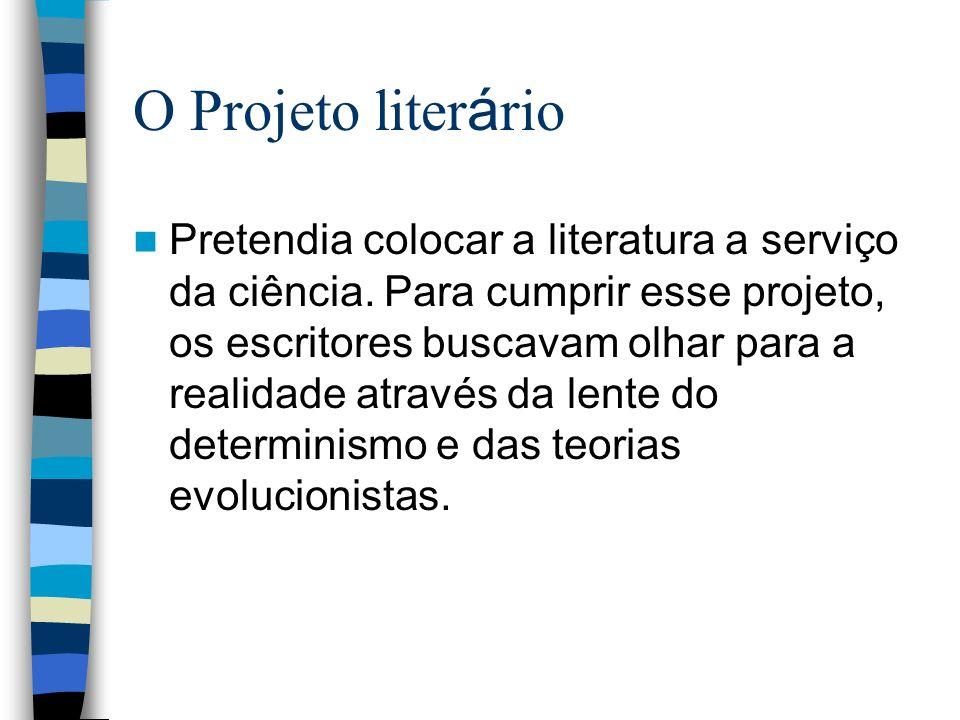 O Projeto literário