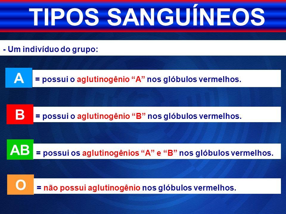 TIPOS SANGUÍNEOS A B AB O - Um indivíduo do grupo: