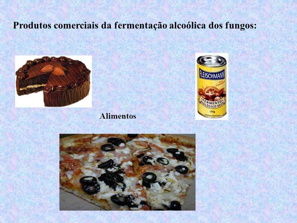Produtos comerciais da fermentação alcoólica dos fungos: