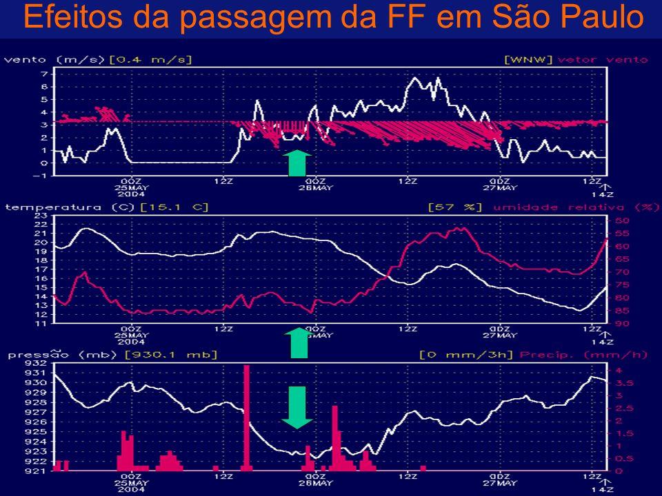 Efeitos da passagem da FF em São Paulo