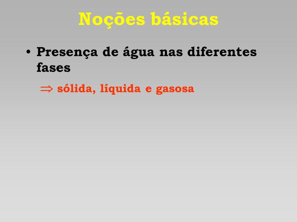 Noções básicas Presença de água nas diferentes fases