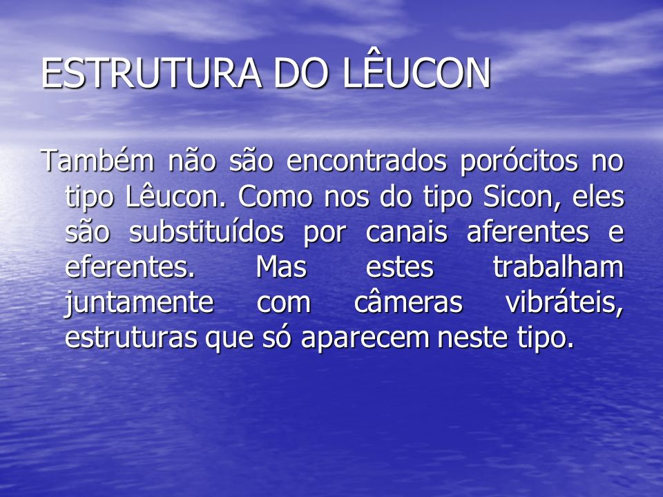 ESTRUTURA DO LÊUCON