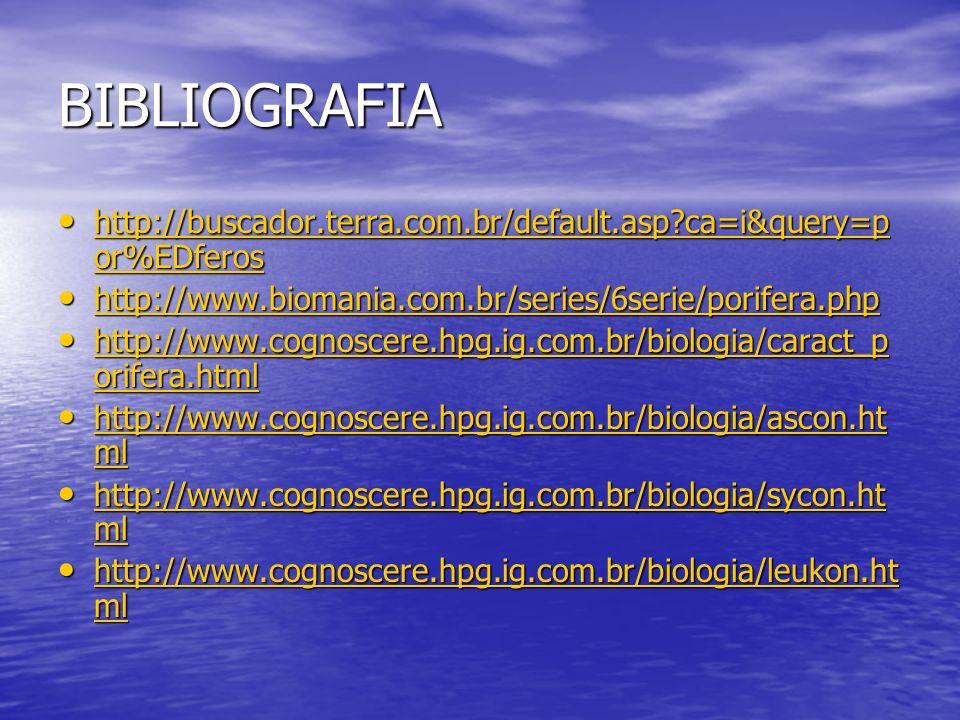 BIBLIOGRAFIA http://buscador.terra.com.br/default.asp ca=i&query=por%EDferos. http://www.biomania.com.br/series/6serie/porifera.php.