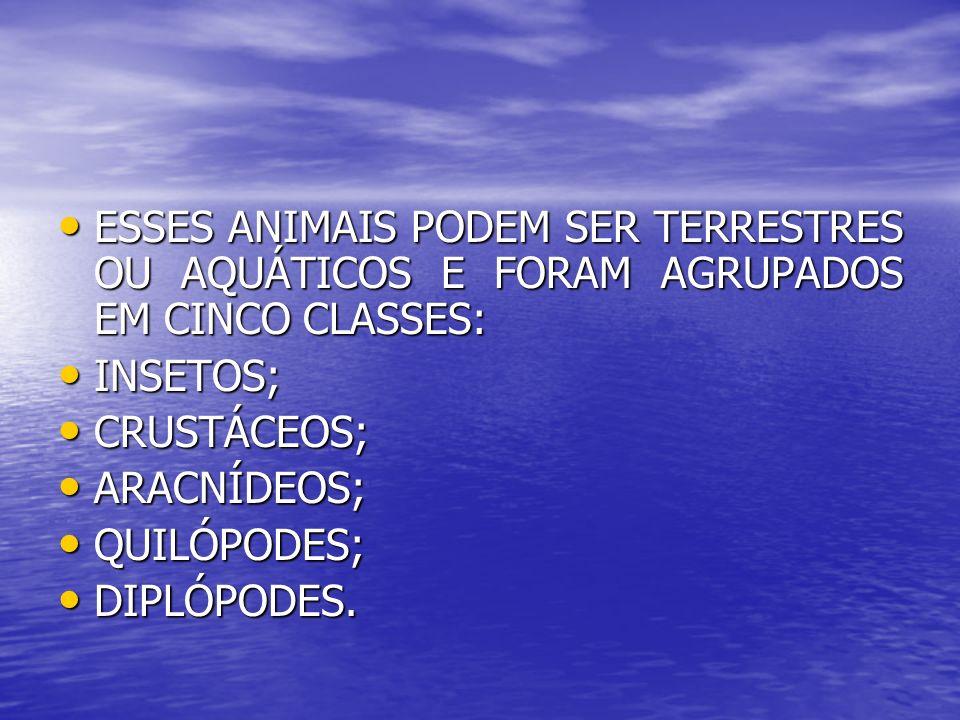 ESSES ANIMAIS PODEM SER TERRESTRES OU AQUÁTICOS E FORAM AGRUPADOS EM CINCO CLASSES: