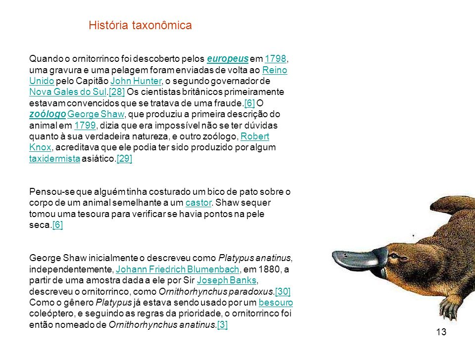 História taxonômica