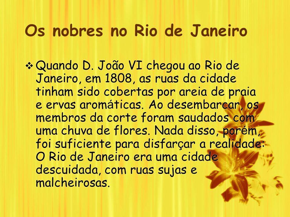 Os nobres no Rio de Janeiro