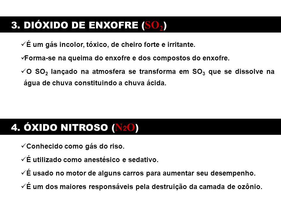 3. DIÓXIDO DE ENXOFRE (SO2)