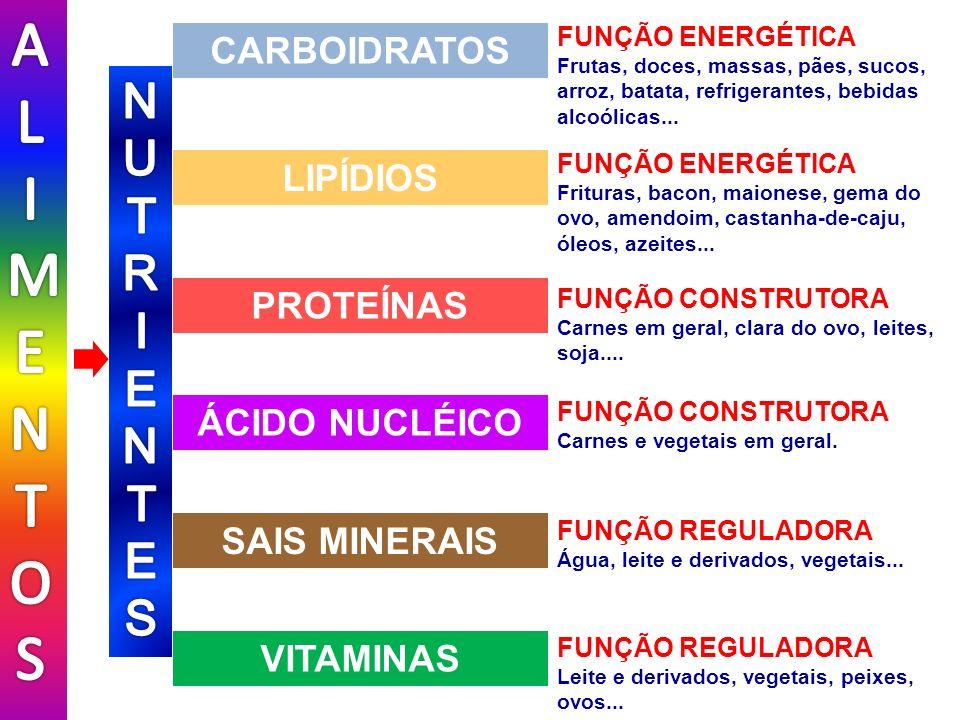 AL IMENTOS NUTR I ENTES CARBOIDRATOS LIPÍDIOS PROTEÍNAS ÁCIDO NUCLÉICO