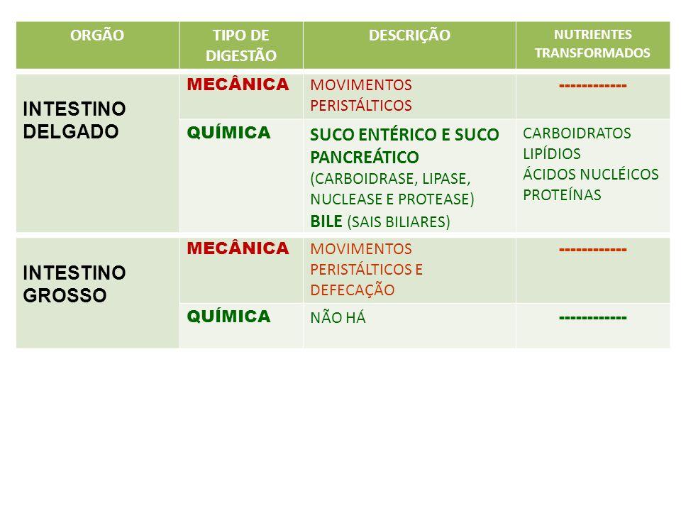 NUTRIENTES TRANSFORMADOS