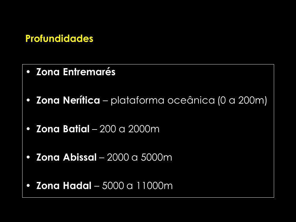 Profundidades Zona Entremarés. Zona Nerítica – plataforma oceânica (0 a 200m) Zona Batial – 200 a 2000m.