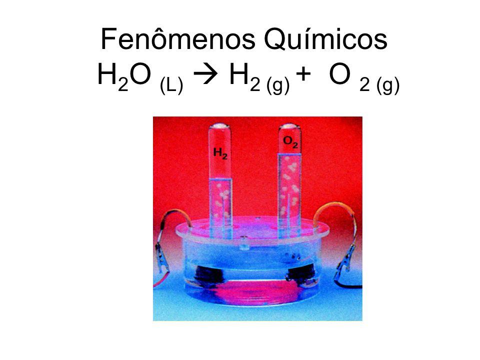 Fenômenos Químicos H2O (L)  H2 (g) + O 2 (g)