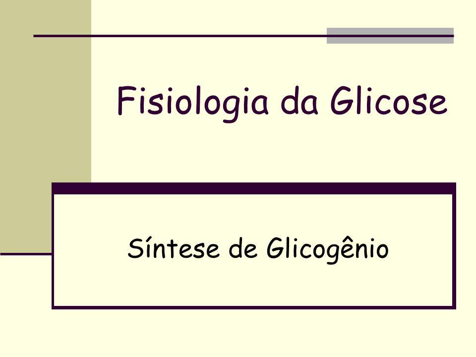 Fisiologia da Glicose Síntese de Glicogênio