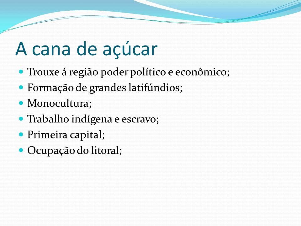 A cana de açúcar Trouxe á região poder político e econômico;