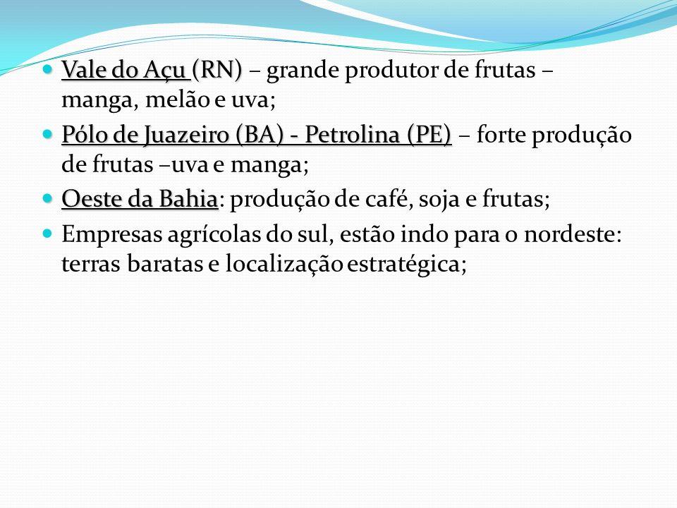Vale do Açu (RN) – grande produtor de frutas – manga, melão e uva;